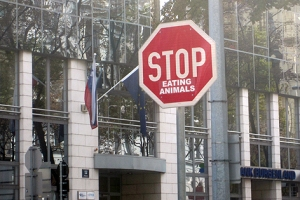 "Humor im Straßenverkehr: ""stop eating animals"""